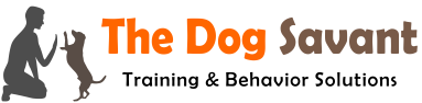 in home dog training Los Angeles
